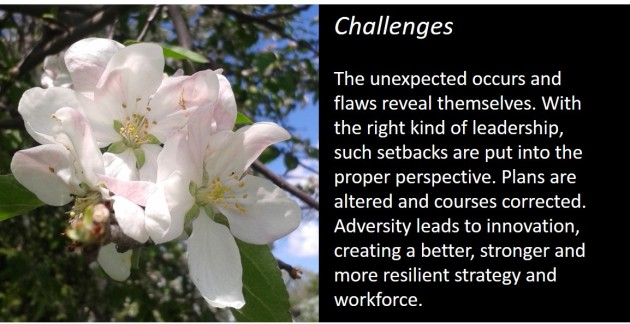 challenges slide
