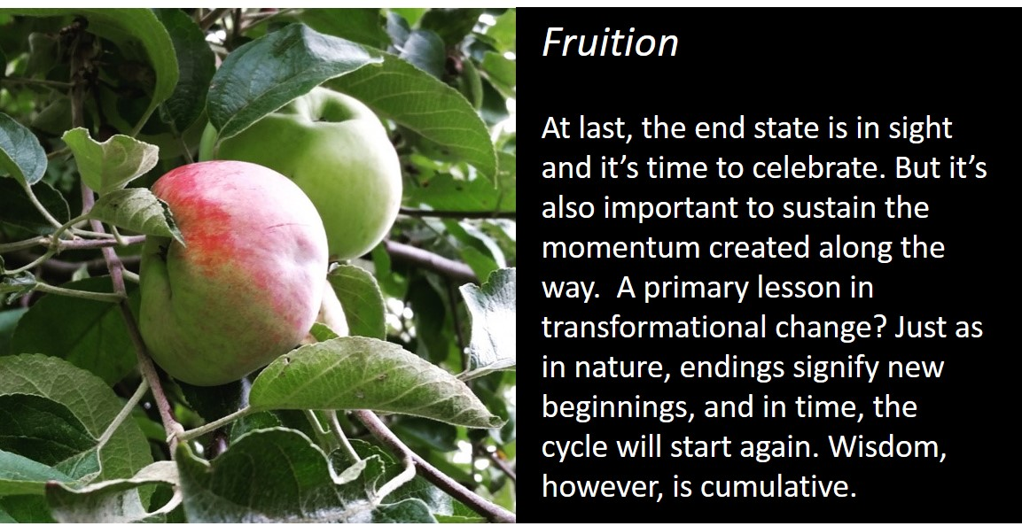 fruition slide