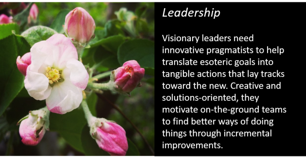leadership slide